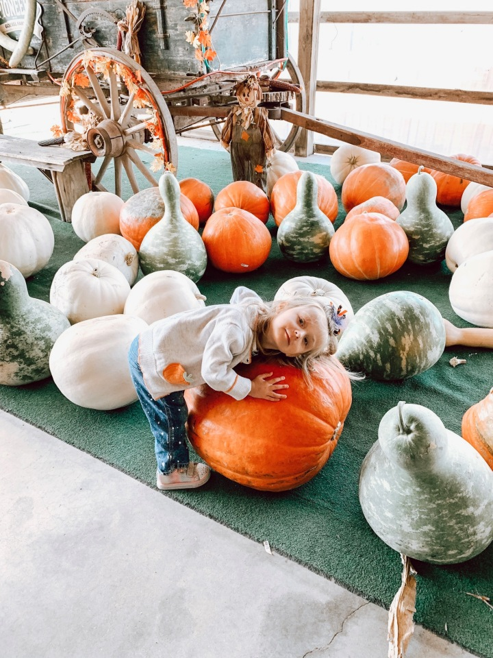A Day At The Pumpkin Patch + Our 6 Year Anniversary